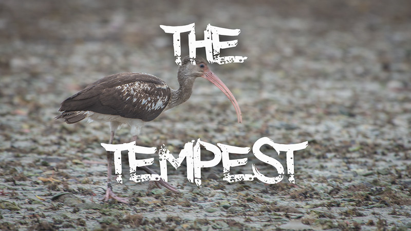 The Tempest Slideshow with Music