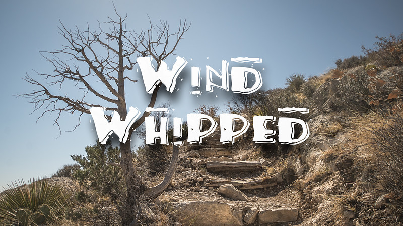 wind Whipped Slideshow with Music