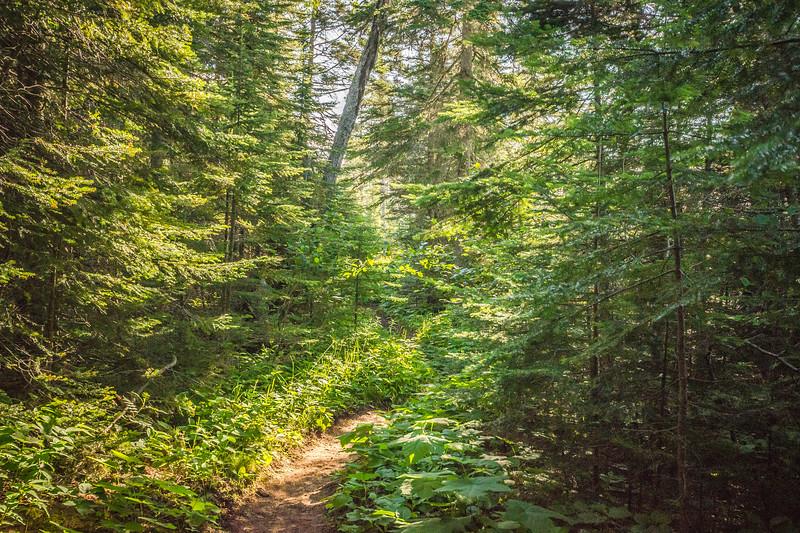 Hidden Hike