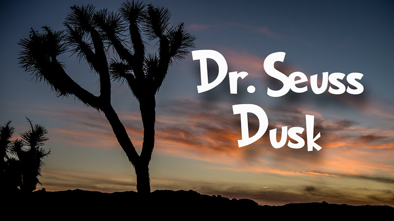 Dr. Seuss Dusk Slideshow with Music