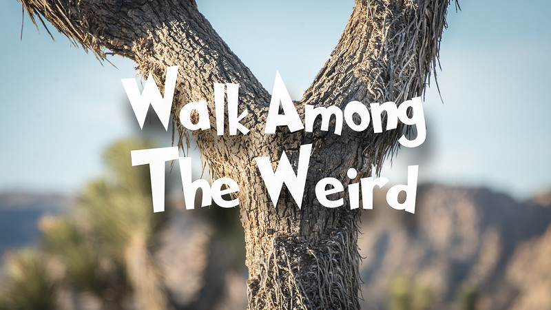 Walk Among the Weird Slideshow with Music