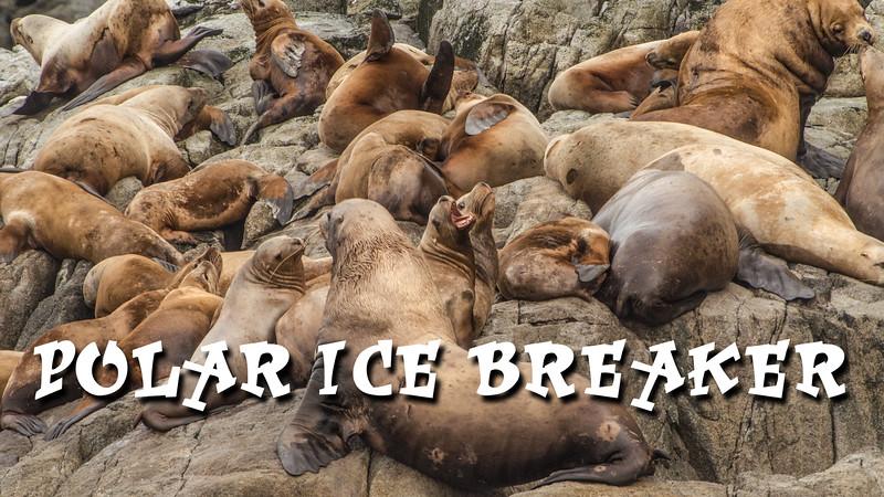 Polar Ice Breaker Slideshow with Music
