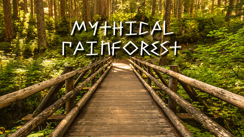 Mythical Rainforest Slideshow with Music