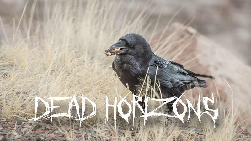 Dead Horizons Slideshow with Music