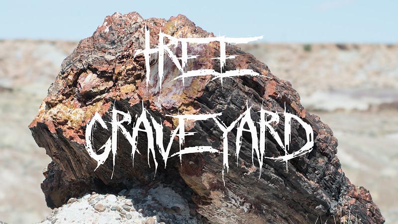 Tree Graveyard Slideshow with Music