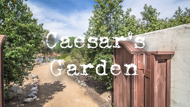 Caesar's Gardens Slideshow with Music