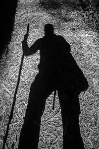 Shadow Hiker