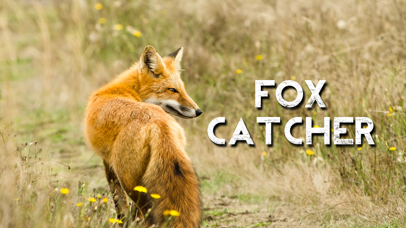 Fox Catcher Slideshow with Music