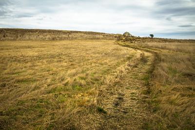Path More Traveled