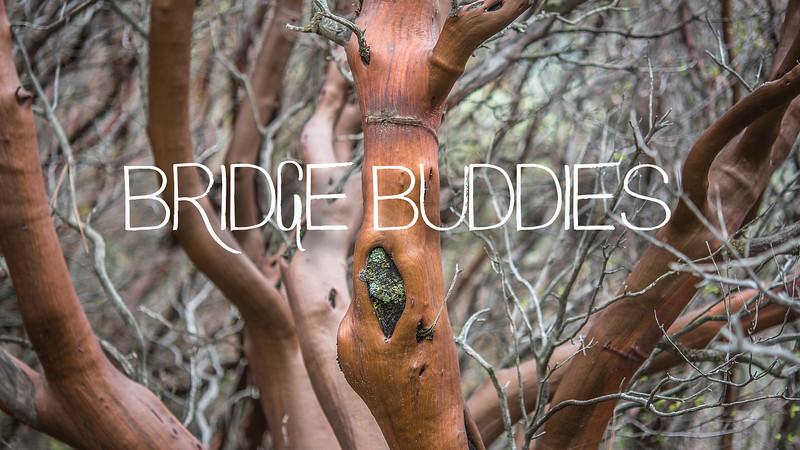Bridge Buddies Slideshow with Music