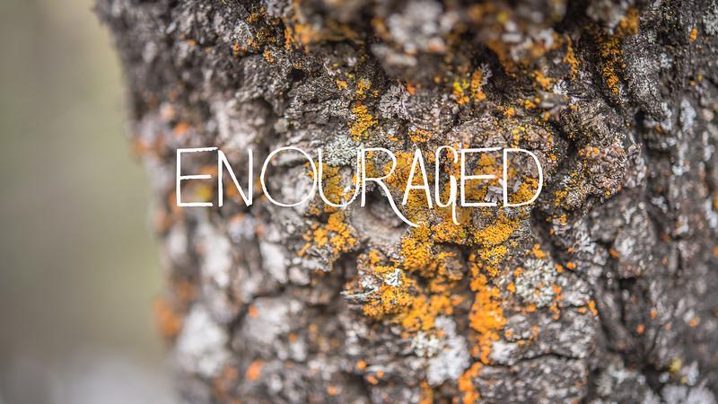 Encouraged Slideshow With Music