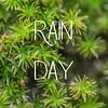 Rain Day Slideshow with Music