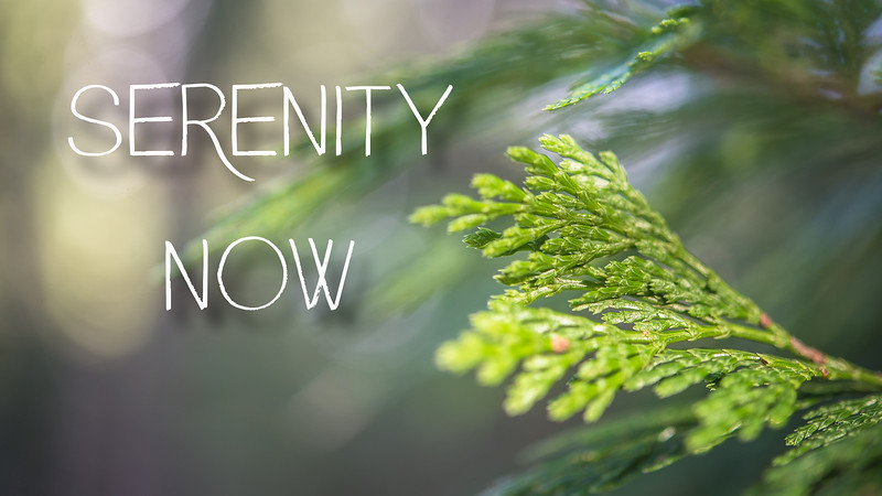 Serenity Now Slideshow with Music