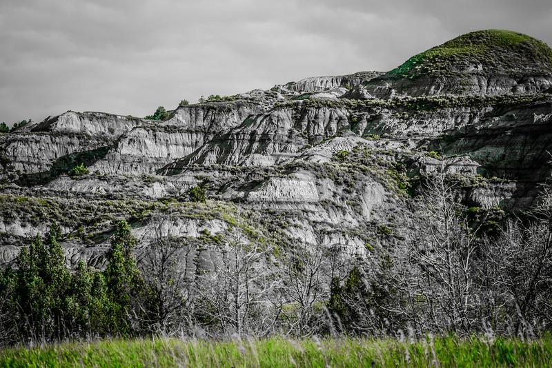 Green Butte-Head