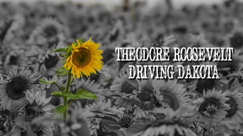 Driving Dakota Slideshow with Music
