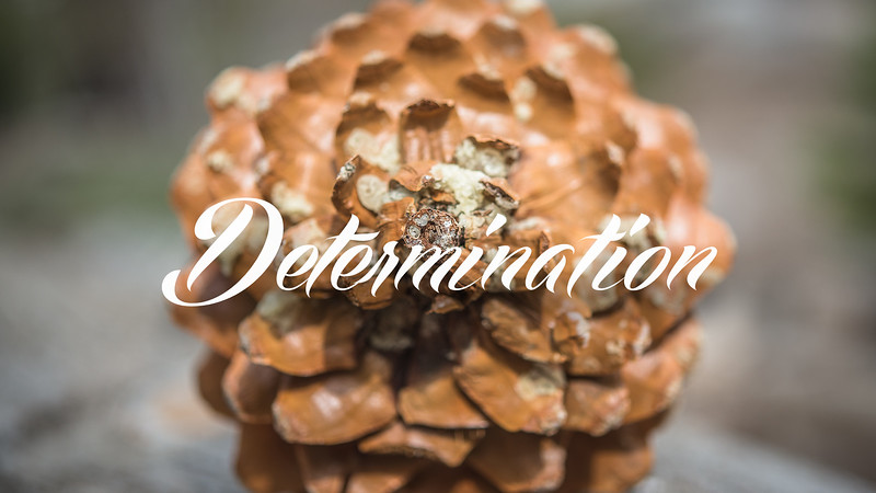 Determination Slideshow with Music