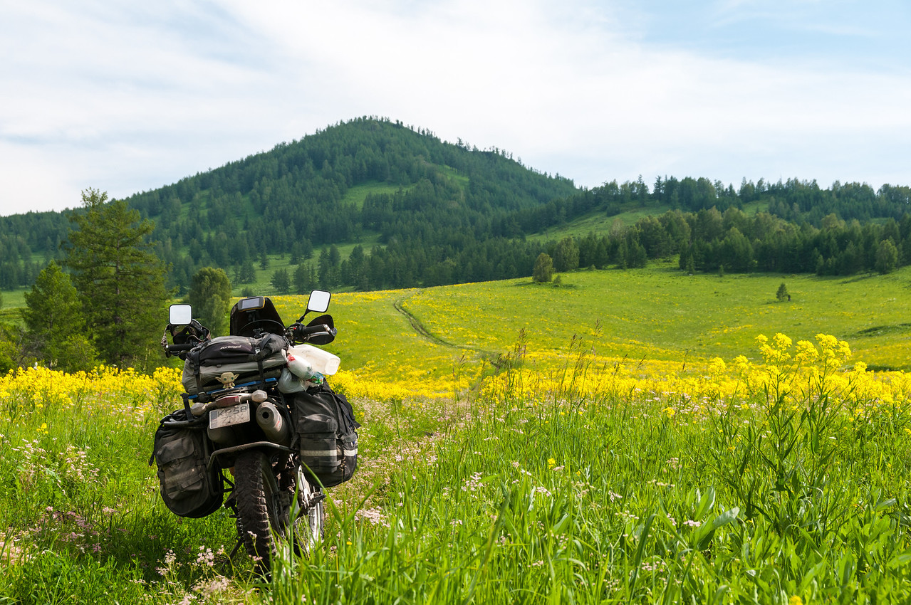 Searching for a new route through the Altai