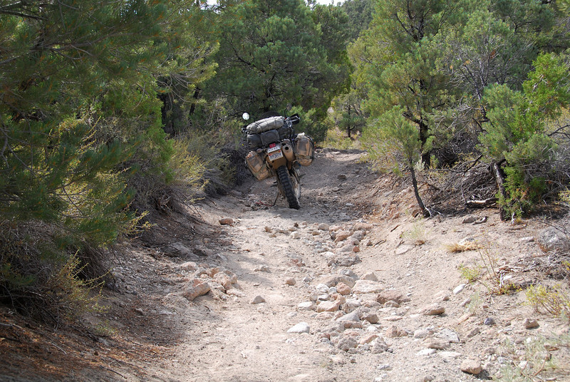 Narrow trails on the TAT in Nevada