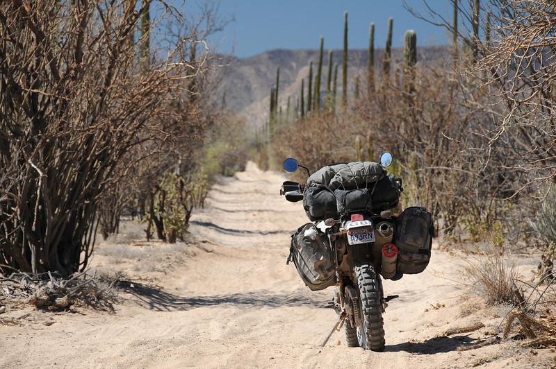 Heading SW from Punta San Francisquito,  Baja California