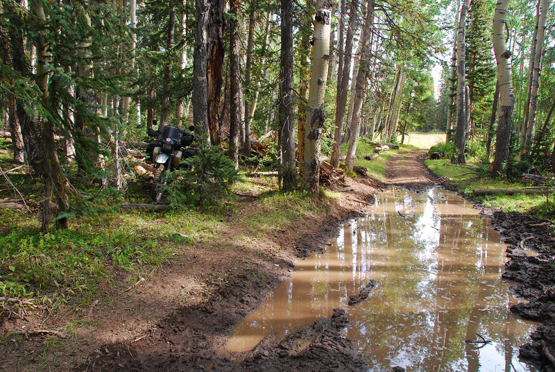 Uncompahgre NF on the TAT,  CO (Didn't fancy getting my feet wet!!)