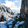 Dog hikes through a snowy pass in the Ansel Adams wilderness