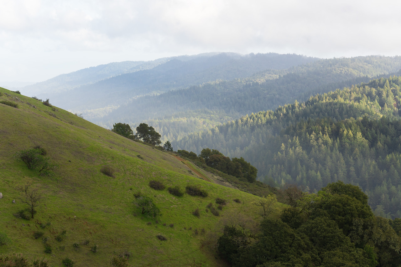 Afternoon sunlight hits the hazy hills of Monte Bello near Palo Alto after a morning rain storm