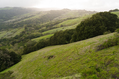 180407 REI Latino Outdoor hike Monte Bello