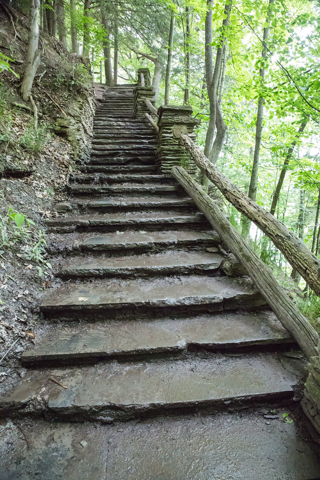 Stone staircase in a forest after a rainstorm