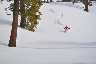 Telemark Skier in Powder