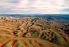 8166 Desert 3D email