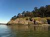 Part of Goat Island Skagit Bay.