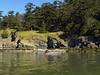 Bret paddling along Goat Island's north shore.