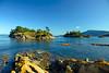 4620 Ewing Island