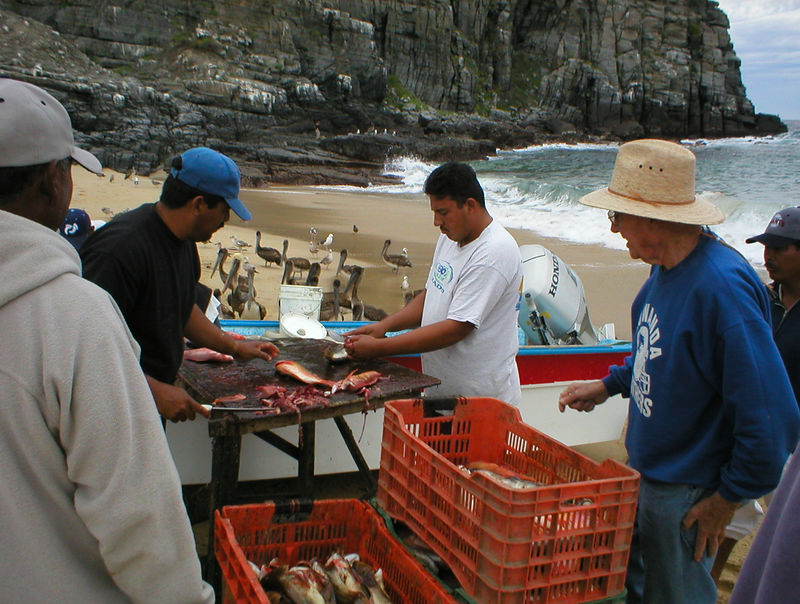 This guy on the right was having one or two selected fish filleted for him.