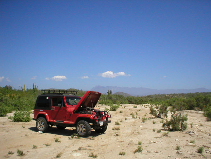 Goofing off:<br /> <br /> Playing out in the desert with 4-wheel drive.<br /> <br />  I park it in nice sand to take an overall look at the jeep. This would be a great spot to camp just outside of Todos Santos, perfect sand and no one would ever know you were there. I will camp here some time in the future on my way through.<br /> <br />  I find another bad vacuum tube, sweet, better now then on the road.