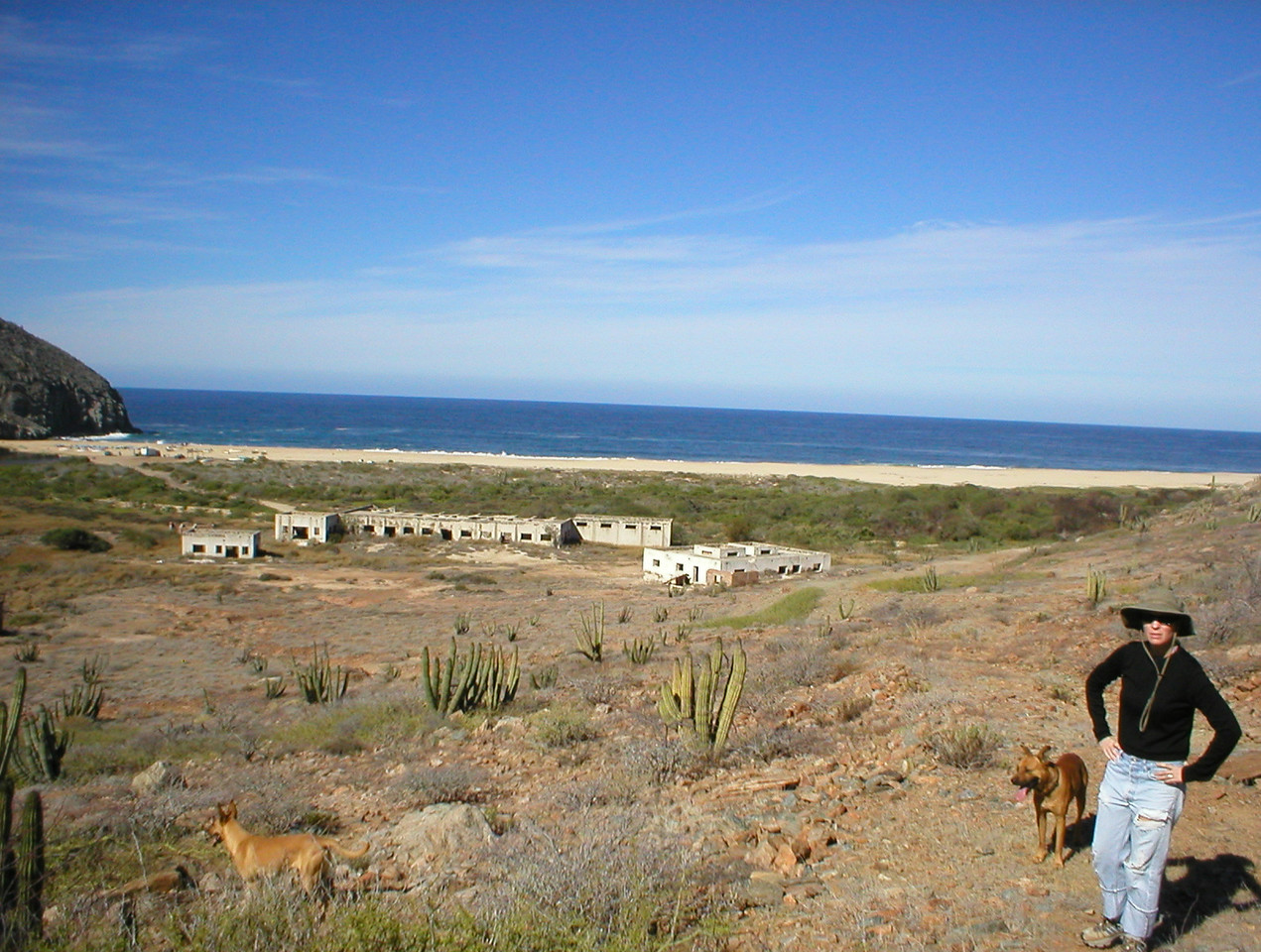 "Punta Lobos to the left, abandoned canning factory below. We've had 4 dogs with us for about 4 miles now and Heidi is getting concerned for their welfare. She says ""They're away from their home, they're chasing rabbits all over hurting their paws on the cactus and they look thirsty"". I won't share any of our water and Heidi is getting mad!"