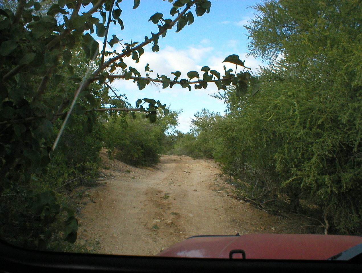 Good trail