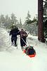 2149 Jay pulling sled