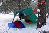 2184 Jay's campsite