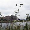 129 -1979-06 - Denmark Kobenhavn Parks