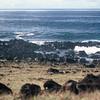 002 - 1987-07 - Easter Island