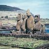 086 - 1987-07 - Easter Island