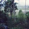 005 - 1991-06 Krakatoa