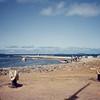 008 - 1992-03 (Mar) - Tonga