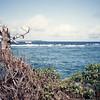 009 - 1992-03 (Mar) - Tonga