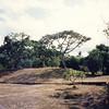 019 - 1992-03 (Mar) - Tonga