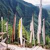 020 - Bhutan 19-21 Nov 1997