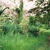 016 - Papua Nieu Guinea 2-11 Jan 1998
