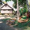 011 - Papua Nieu Guinea 2-11 Jan 1998