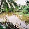 010 - Papua Nieu Guinea 2-11 Jan 1998